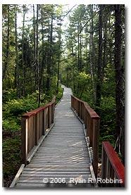 boardwalk-trail