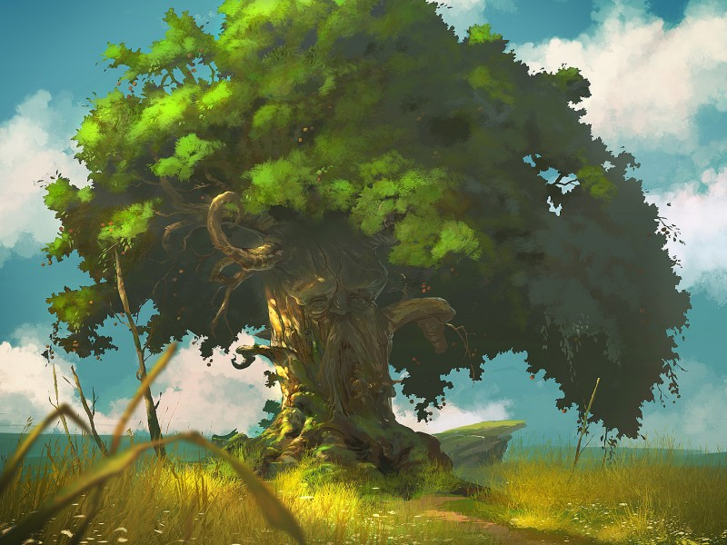 appletree_concept_01_final_lowres-800x600.jpg