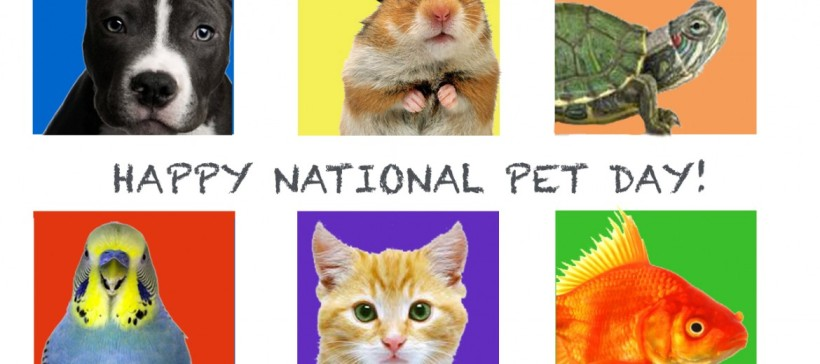 happy-national-pet-day--1170x520